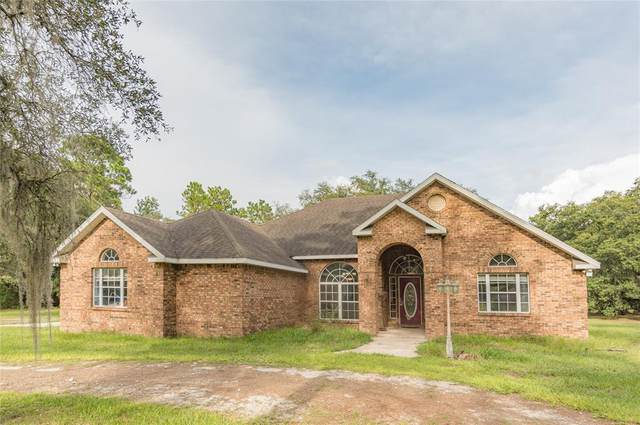 12291 NE 91ST Court, Archer, FL 32618 (MLS #OM626256) :: Vacasa Real Estate