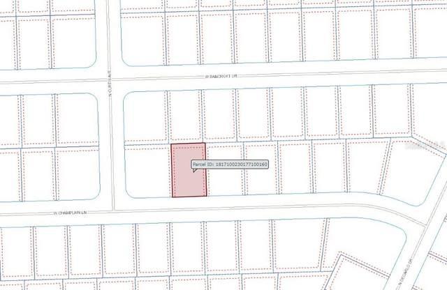 833 W Champlain Lane, Citrus Springs, FL 34434 (MLS #OM626372) :: Gate Arty & the Group - Keller Williams Realty Smart