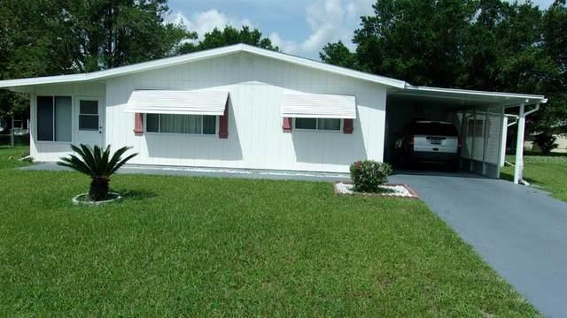 10300 SW 92ND Avenue, Ocala, FL 34481 (MLS #OM626449) :: Zarghami Group