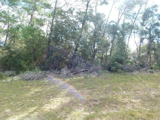 0 SW 21ST Circle, Ocala, FL 34473 (MLS #OM626562) :: Lockhart & Walseth Team, Realtors