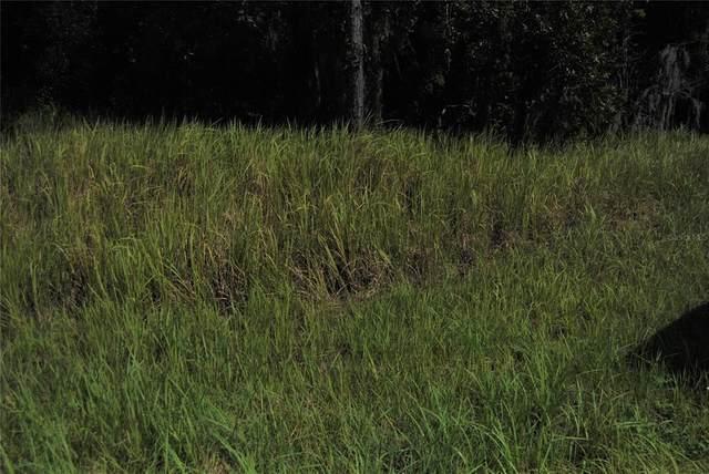 0 Locust Lane, Ocala, FL 34472 (MLS #OM626576) :: Team Turner