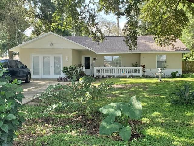 18 Cedar Trace, Ocala, FL 34472 (MLS #OM626582) :: Team Turner