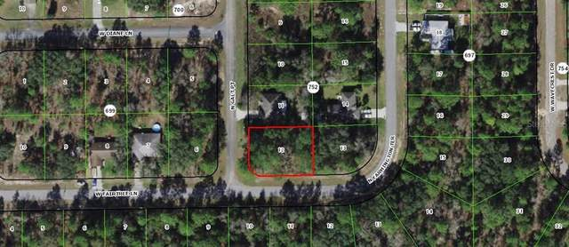 7045 N Galt Pt, Citrus Springs, FL 34433 (MLS #OM626609) :: Delgado Home Team at Keller Williams