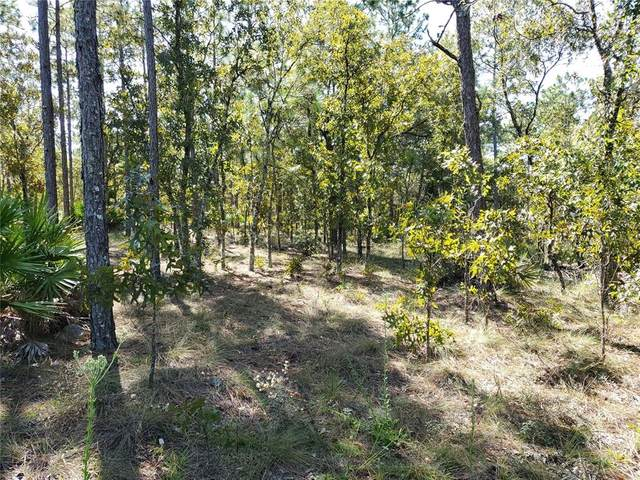 Lot 10 W 1/2 SW 62 ND Place, Ocala, FL 34481 (MLS #OM626671) :: Premium Properties Real Estate Services