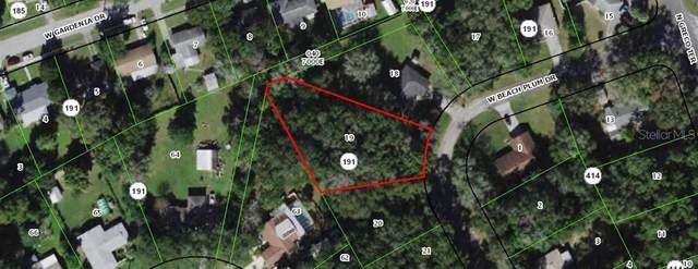 2166 W Beach Plum Dr, Citrus Springs, FL 34434 (MLS #OM626727) :: Your Florida House Team