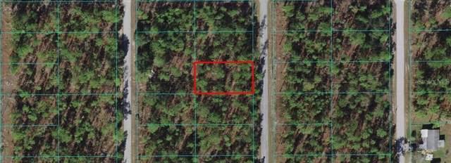 TBD SW Treetop, Dunnellon, FL 34431 (MLS #OM626731) :: Team Turner