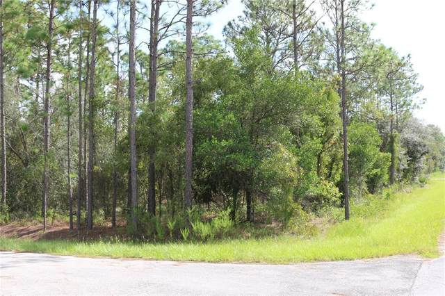 Sparrow Road, Dunnellon, FL 34431 (MLS #OM626744) :: Globalwide Realty