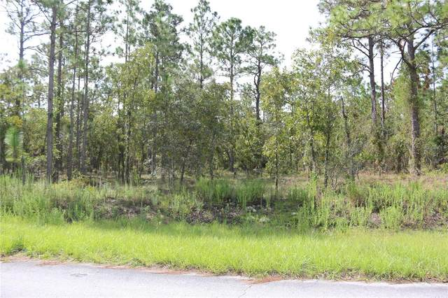 Narcissus Road, Dunnellon, FL 34431 (MLS #OM626747) :: Globalwide Realty
