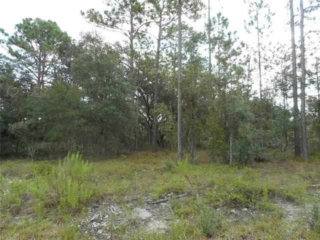 Lot 29 SW Little Cliffs Drive, Dunnellon, FL 34431 (MLS #OM626754) :: Vacasa Real Estate