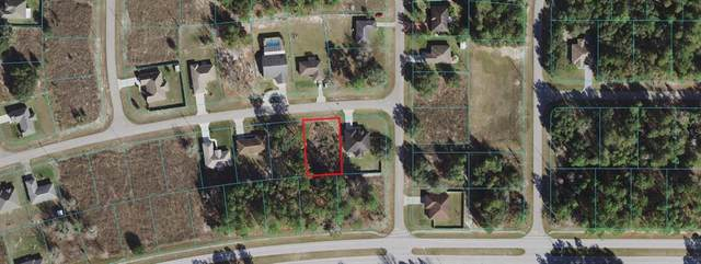 350 SW 128TH Place, Ocala, FL 34480 (MLS #OM626790) :: RE/MAX Elite Realty