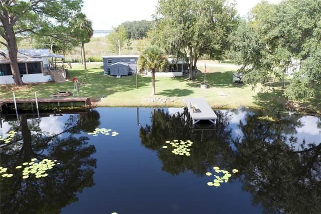 23739 NE 152ND LANE Road, Salt Springs, FL 32134 (MLS #OM626835) :: Prestige Home Realty