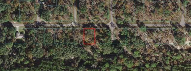 TBD Guava Pass, Ocala, FL 34472 (MLS #OM626978) :: Carmena and Associates Realty Group