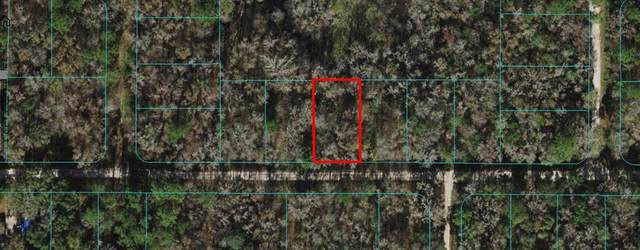 13TH Place SW, Ocala, FL 34481 (MLS #OM627017) :: Premium Properties Real Estate Services