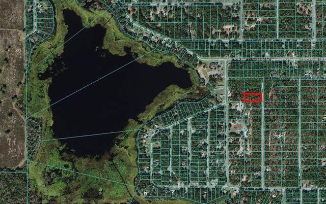 TBD Freshwater Court, Dunnellon, FL 34431 (MLS #OM627032) :: RE/MAX Elite Realty
