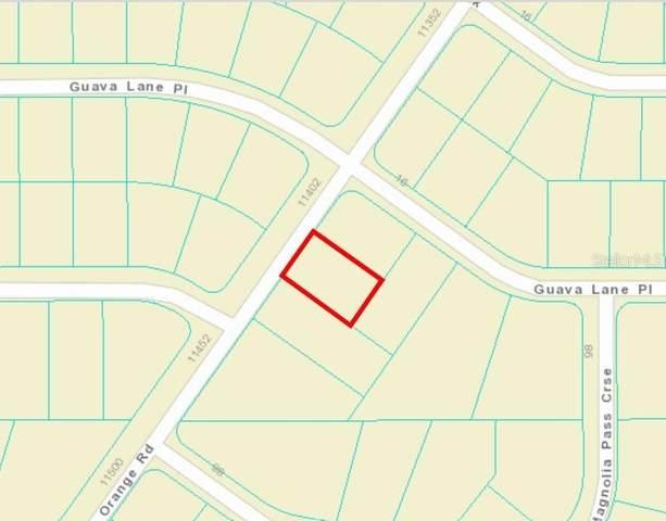 00 Orange Rd., Ocklawaha, FL 32179 (MLS #OM627065) :: The Hustle and Heart Group
