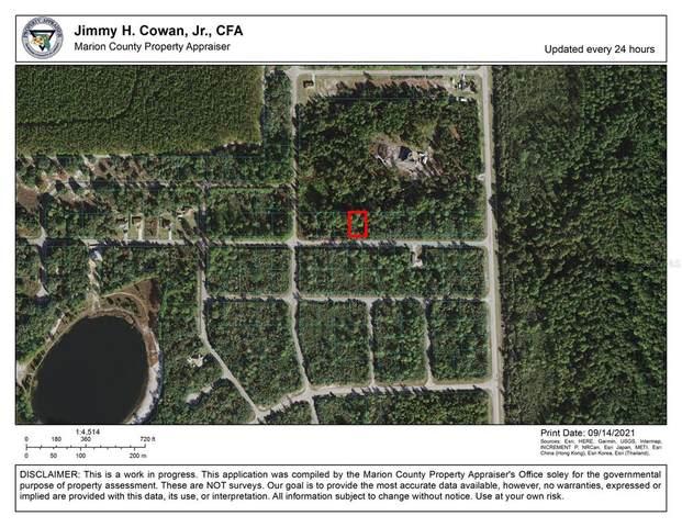 Fisher Pass, Ocklawaha, FL 32179 (MLS #OM627087) :: Team Turner
