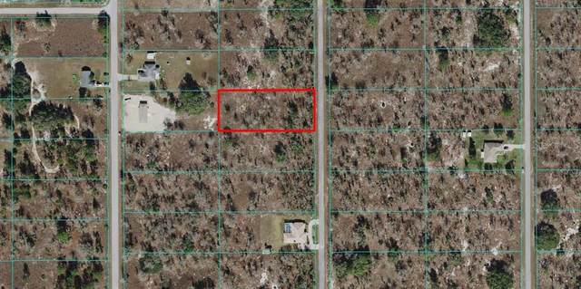 TBD Oxalis Court, Dunnellon, FL 34431 (MLS #OM627116) :: RE/MAX Elite Realty