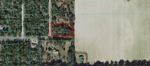 TBD Monaco Ct., Dunnellon, FL 34431 (MLS #OM627120) :: The Hustle and Heart Group