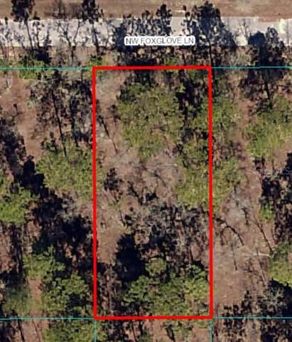 Lot 13 NW Foxglove Lane, Dunnellon, FL 34431 (MLS #OM627150) :: Gate Arty & the Group - Keller Williams Realty Smart