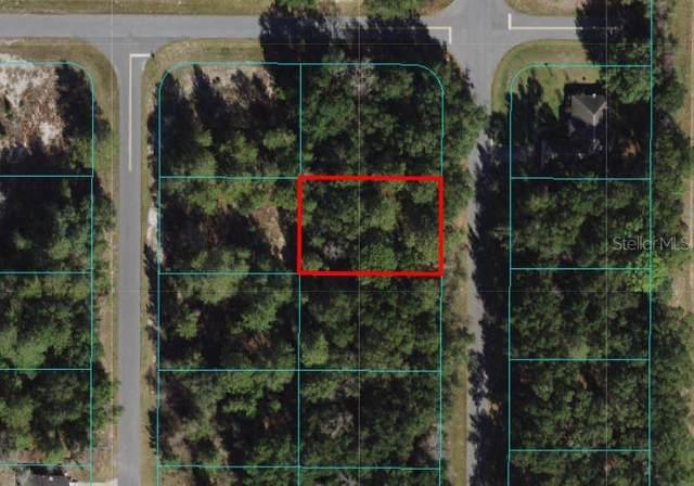 TBD SW 168 Lane, Ocala, FL 34473 (MLS #OM627178) :: The Hustle and Heart Group