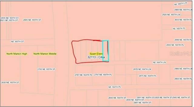 TBD NE 164TH Circle, Citra, FL 32113 (MLS #OM627198) :: Vacasa Real Estate