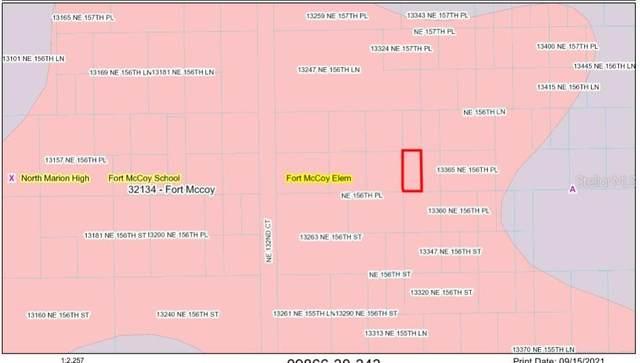 TBD NE 156TH Place, Fort Mc Coy, FL 32134 (MLS #OM627207) :: Prestige Home Realty