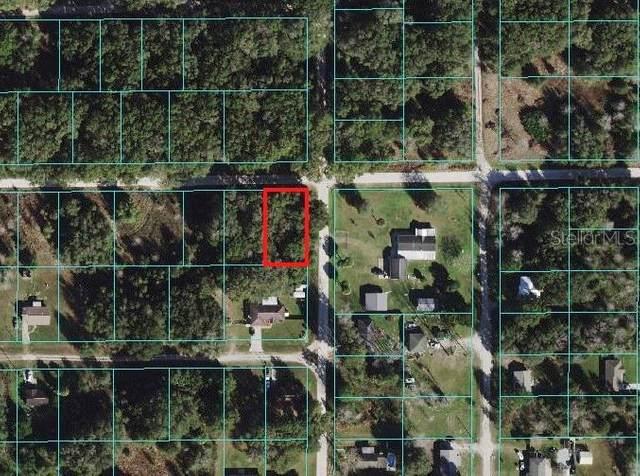 0 SE 142ND Lane, Summerfield, FL 34491 (MLS #OM627216) :: Carmena and Associates Realty Group