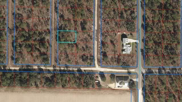 NE 148TH NORTH Terrace, Williston, FL 32696 (MLS #OM627276) :: Zarghami Group