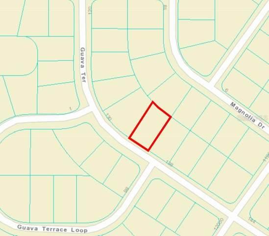 0 Guava Terrace, Ocklawaha, FL 32179 (MLS #OM627278) :: Southern Associates Realty LLC