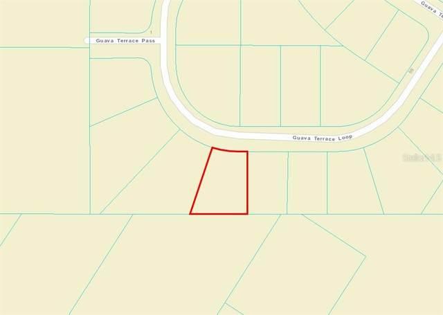 TBD SW Guava Terrace Loop, Ocklawaha, FL 32179 (MLS #OM627300) :: Gate Arty & the Group - Keller Williams Realty Smart