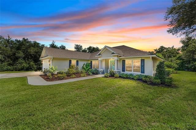 3405 SW 52ND Terrace, Ocala, FL 34474 (MLS #OM627324) :: Cartwright Realty