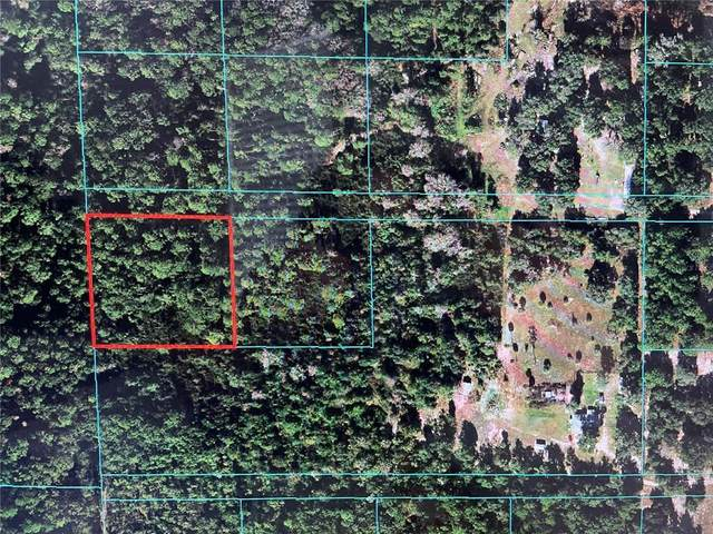 TBD NE 73 TERRACE Road, Citra, FL 32113 (MLS #OM627399) :: Vacasa Real Estate
