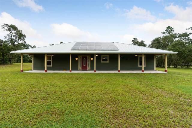 12151 SE 67TH Place, Morriston, FL 32668 (MLS #OM627416) :: Vacasa Real Estate