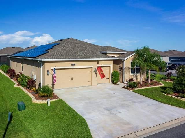 6065 SW 89TH STREET Road, Ocala, FL 34476 (MLS #OM627484) :: CENTURY 21 OneBlue