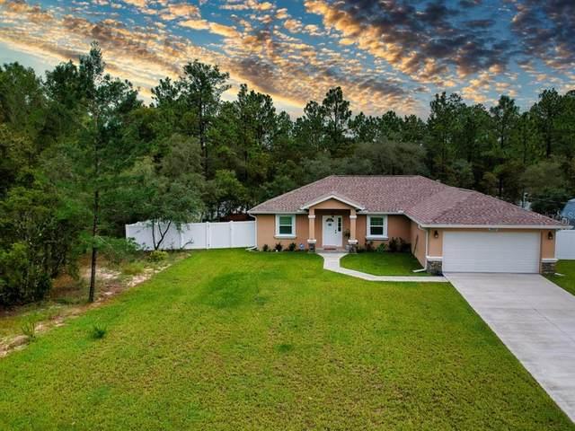 3955 W Drysdale Lane, Citrus Springs, FL 34433 (MLS #OM627495) :: Carmena and Associates Realty Group