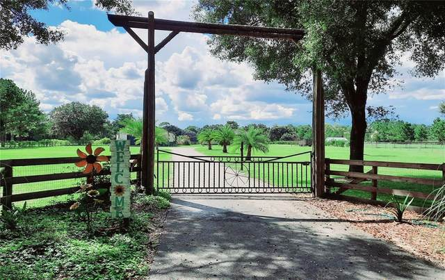 14012 S Magnolia Avenue, Ocala, FL 34473 (MLS #OM627503) :: Keller Williams Realty Select