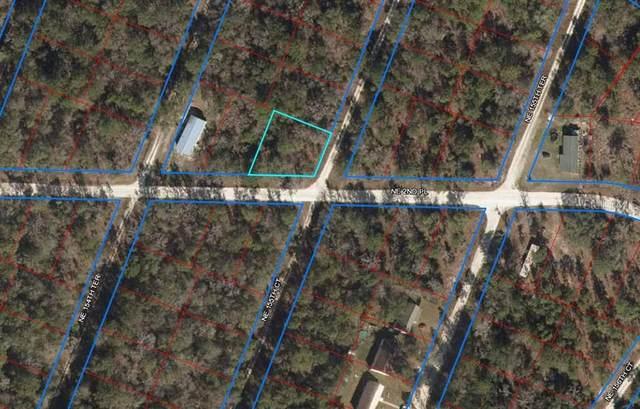 250 NE 155TH Court, Williston, FL 32696 (MLS #OM627546) :: Dalton Wade Real Estate Group