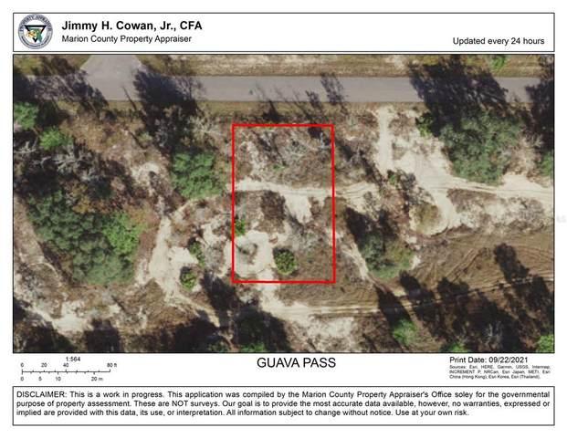 Guava Pass, Ocklawaha, FL 32179 (MLS #OM627567) :: The Paxton Group