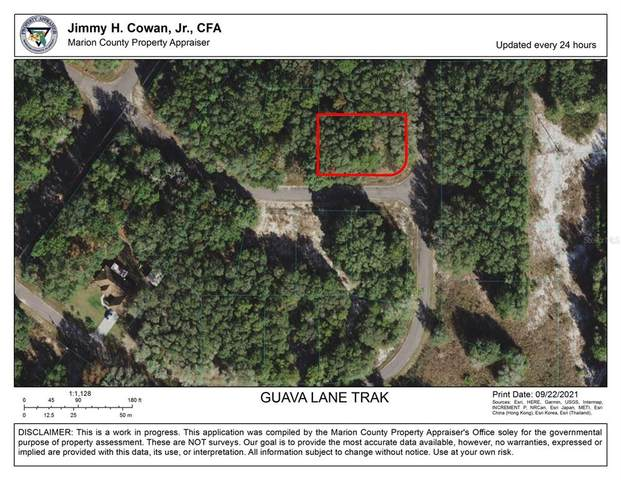 Guava Lane Trak, Ocklawaha, FL 32179 (MLS #OM627571) :: Gate Arty & the Group - Keller Williams Realty Smart