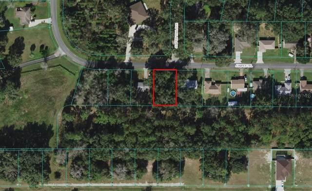 SE Juniper Trail, Ocala, FL 34480 (MLS #OM627614) :: Everlane Realty