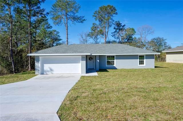 25 Dogwood Drive Loop, Ocala, FL 34472 (MLS #OM627638) :: Globalwide Realty