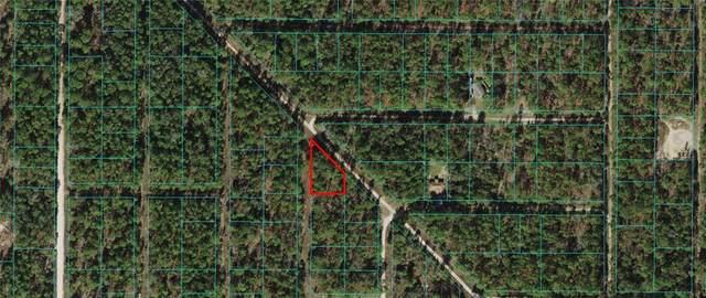 SW 159 AVENUE Road, Ocala, FL 34481 (MLS #OM627645) :: SunCoast Home Experts