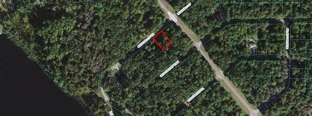 00 Sequoia Loop Drive, Ocklawaha, FL 32179 (MLS #OM627656) :: Gate Arty & the Group - Keller Williams Realty Smart