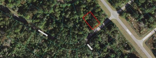 00 Sequoia Loop Drive, Ocklawaha, FL 32179 (MLS #OM627659) :: Gate Arty & the Group - Keller Williams Realty Smart