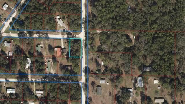 NE 160TH Avenue, Williston, FL 32696 (MLS #OM627705) :: Zarghami Group