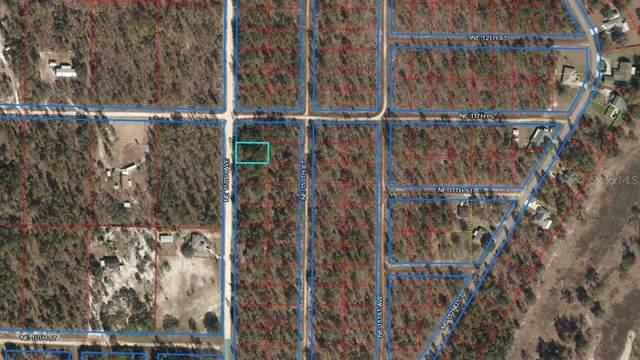 NE 150TH Avenue, Williston, FL 32696 (MLS #OM627706) :: Zarghami Group
