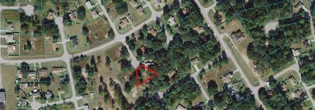 TBD Pine Pass Lane, Ocala, FL 34472 (MLS #OM628030) :: Delgado Home Team at Keller Williams