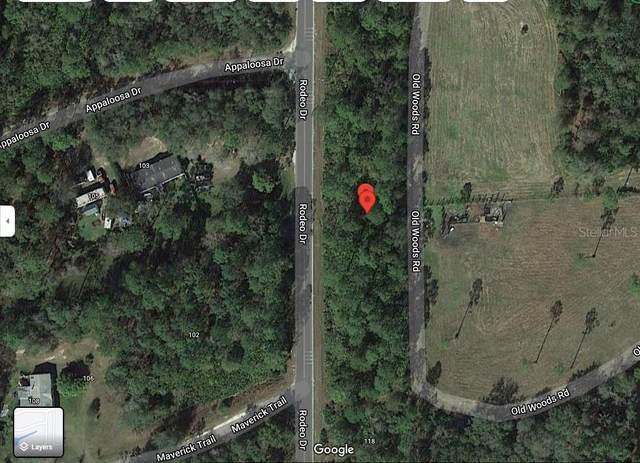 000 Rodeo Drive, Interlachen, FL 32148 (MLS #OM628086) :: Delgado Home Team at Keller Williams