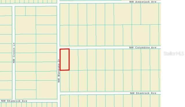 Nw Columbine Ave, Dunnellon, FL 34431 (MLS #OM628263) :: Delgado Home Team at Keller Williams