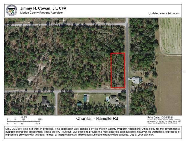 SW Ranielle Road, Dunnellon, FL 34430 (MLS #OM628328) :: Team Bohannon